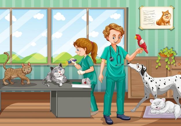 Dois veterinários curando muitos animais de estimação na clínica Vetor Premium