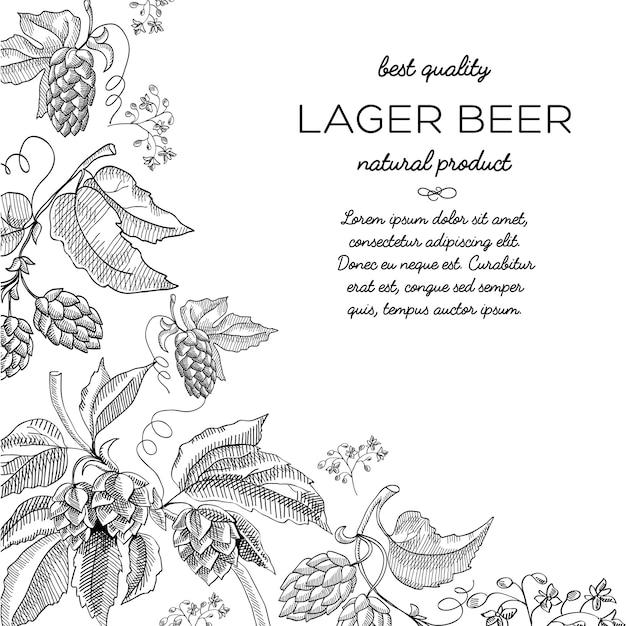 Doodle de ornamento de vinheta de lúpulo de moldura de canto com texto sobre cerveja lager de produto natural Vetor grátis