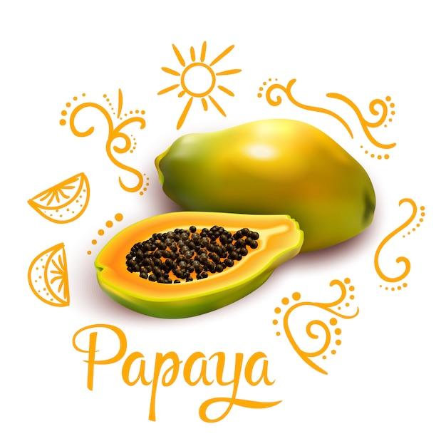 Doodles around papaya composição Vetor grátis