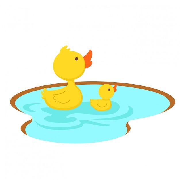 Duck a natação na lagoa, ilustração. Vetor Premium