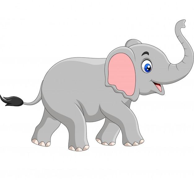 Elefante Dos Desenhos Animados Isolado Vetor Premium