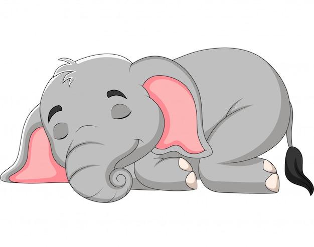 Elefante dos desenhos animados Vetor Premium