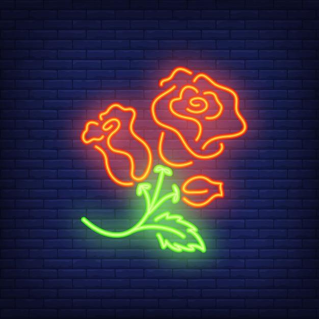 Elemento de sinal de néon de roseira. conceito da flor para a propaganda brilhante da noite. Vetor grátis