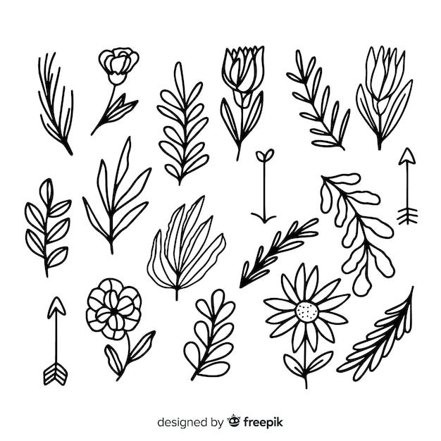 Elementos de decoração floral Vetor grátis
