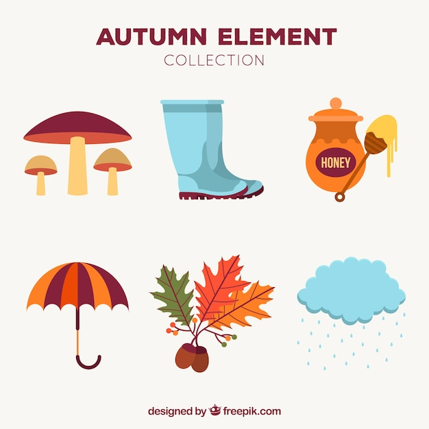 Elementos de outono com estilo moderno Vetor grátis