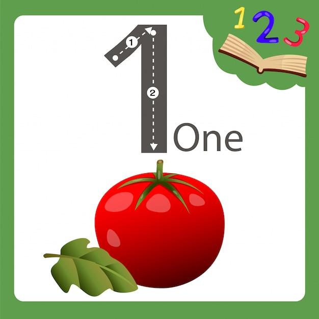 Elementos de um número de tomate Vetor Premium