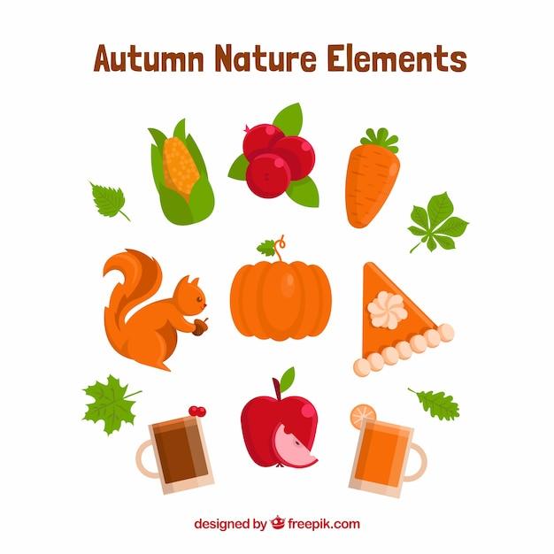 Elementos variedade da natureza no outono Vetor grátis