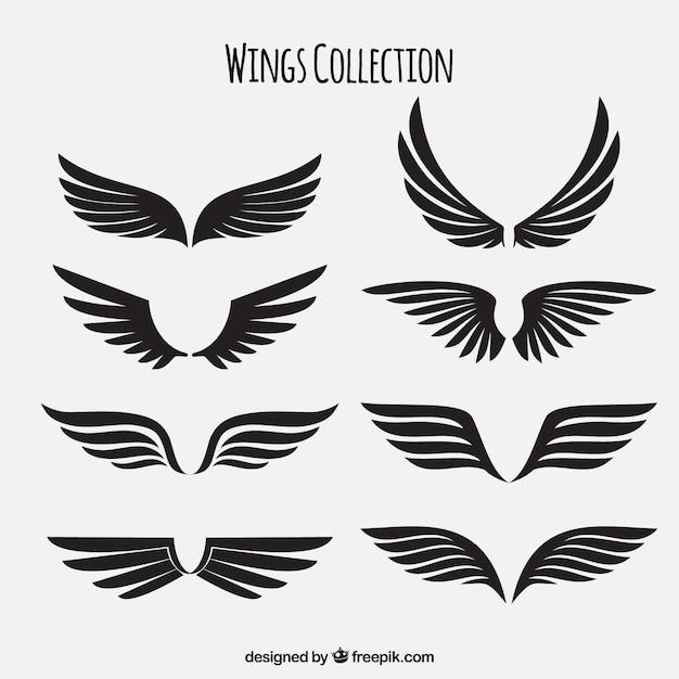 Embalagem de asas pretas Vetor grátis