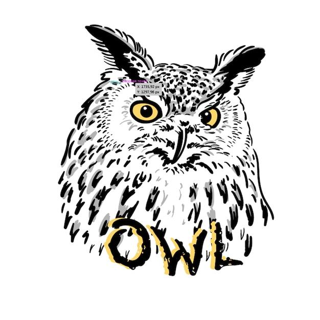 Emblema e logotipos de coruja Vetor Premium