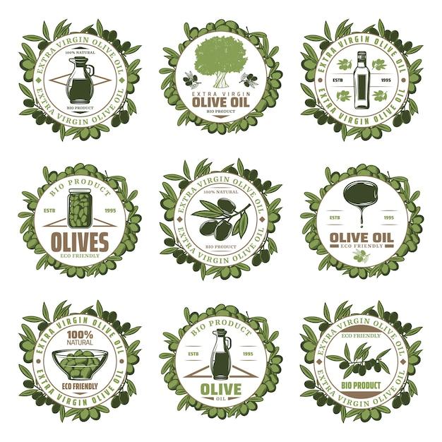 Emblemas de azeitona coloridos vintage com inscrições frascos de galhos de árvores garrafa de azeite extra virgem Vetor grátis