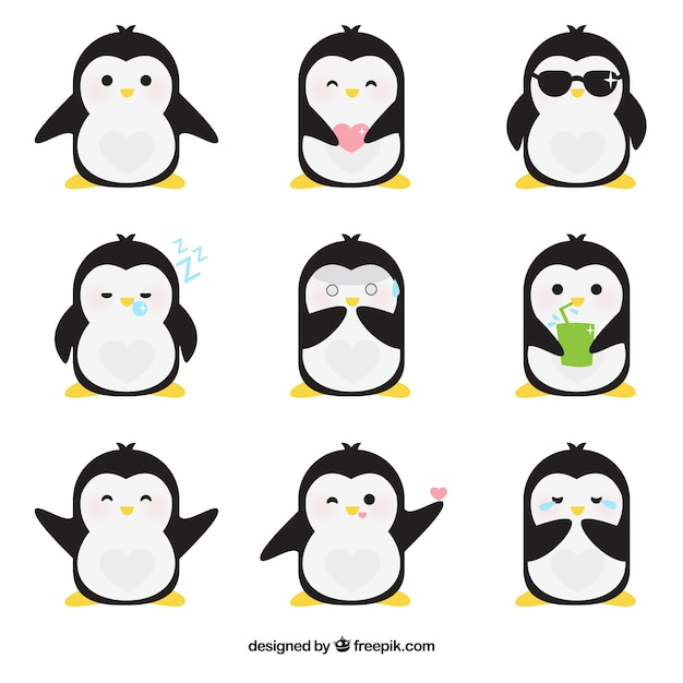 Emoticons planas de pinguim fantástica Vetor grátis