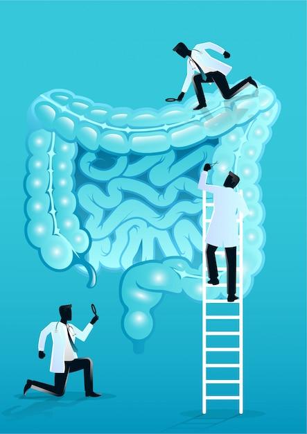 Equipe de médicos diagnosticar intestino humano Vetor Premium