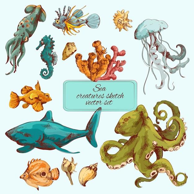Esboço de criaturas do mar colorido Vetor Premium