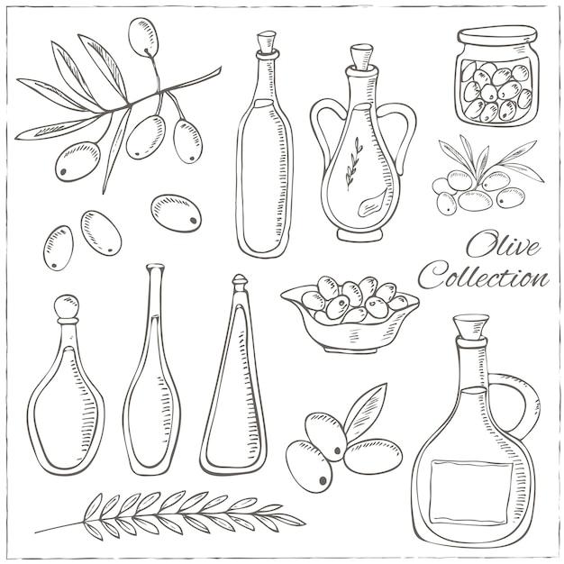 Esboço de oliva com galho de árvore e garrafa de óleo. Vetor Premium