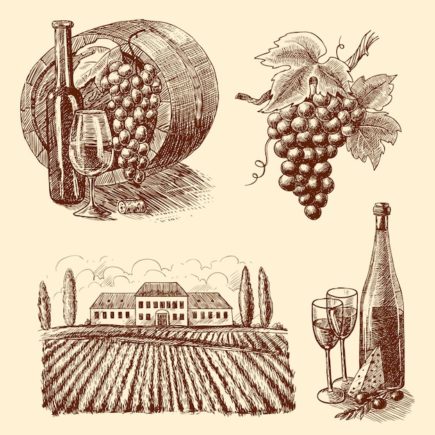 Esboço decorativo de vinho Vetor grátis