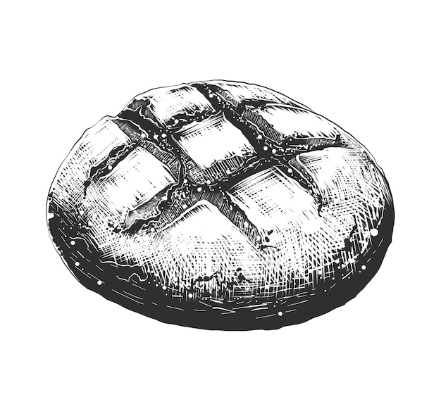 Esboço desenhado de mão de pão pão em monocromático Vetor Premium