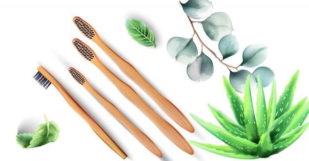 Escovas de dentes de bambu com plantas de aloe vera Vetor Premium