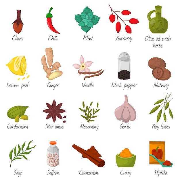 Especiarias, condimentos e vetor decorativo dos elementos das ervas do alimento do tempero. Vetor Premium