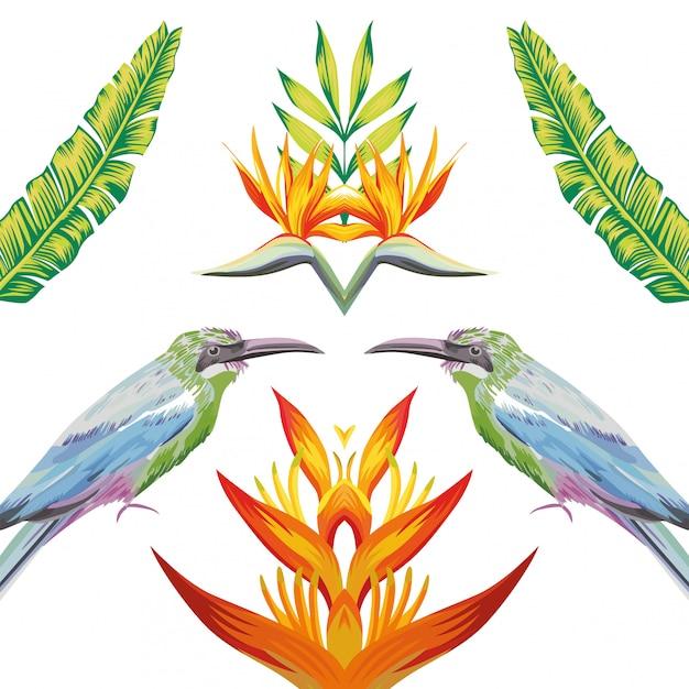 Espelho, pássaros, tropicais, flores, e, folhas Vetor Premium
