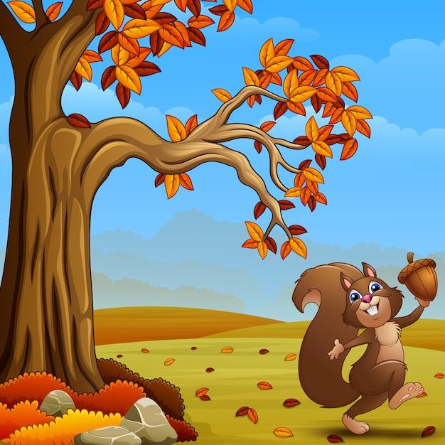 Esquilo feliz segurando uma bolota na floresta de outono Vetor Premium