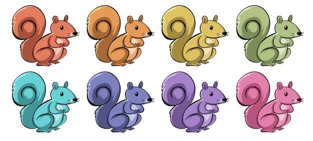 Esquilos em cores diferentes Vetor grátis