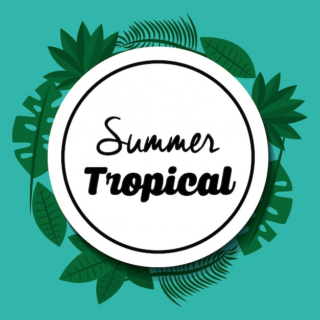 Estação tropical de verão Vetor Premium