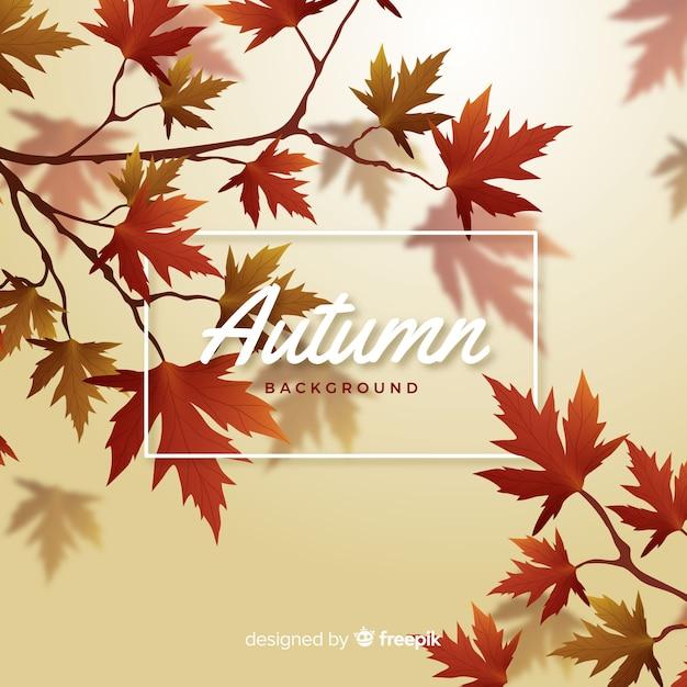 Estilo realista de fundo decorativo outono Vetor grátis