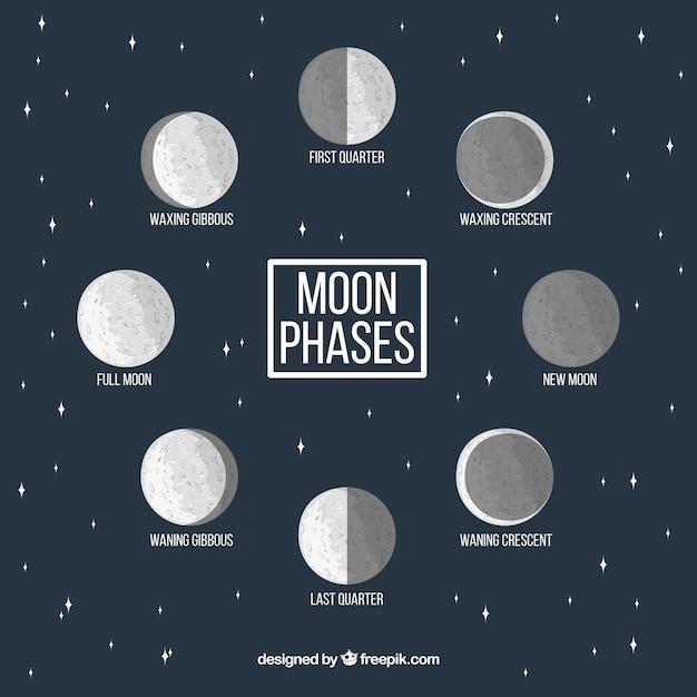Estrelado, fundo, decorativo, lua, fases Vetor grátis