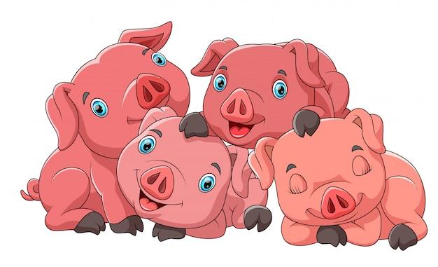 Família de bonito dos desenhos animados de porco Vetor Premium