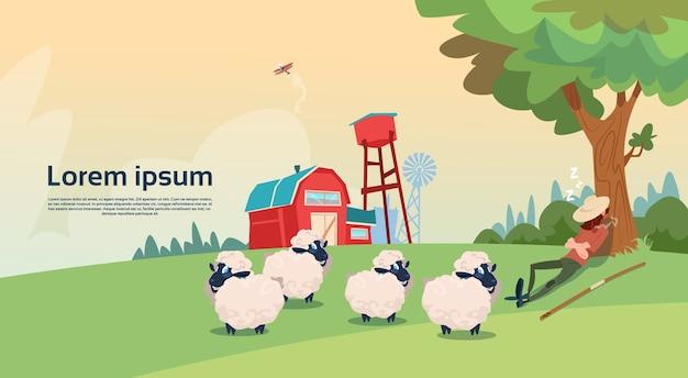 Farmer shepherd breeding sheep fazenda de lã Vetor Premium