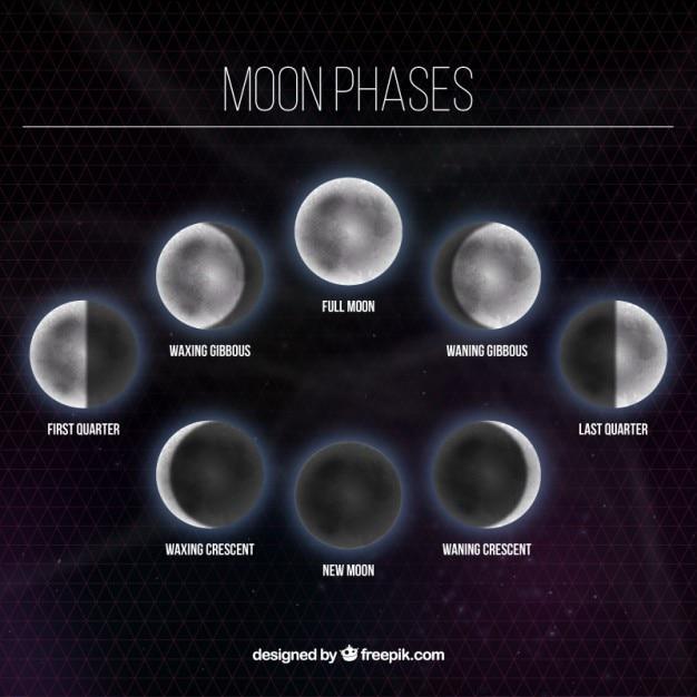 Fases da lua fundo Vetor grátis