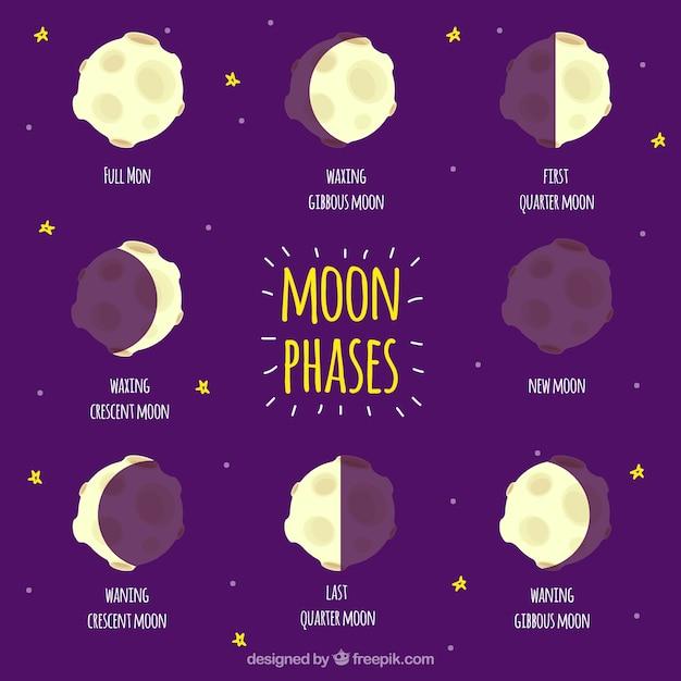 Fases do conjunto da lua Vetor grátis