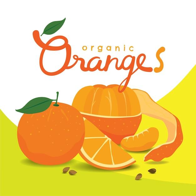 Fatias de laranja descascadas orgânicas Vetor Premium