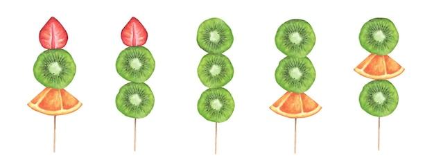 Fatias de morango, kiwi e laranja em uma vara de madeira. ilustração em aquarela Vetor Premium