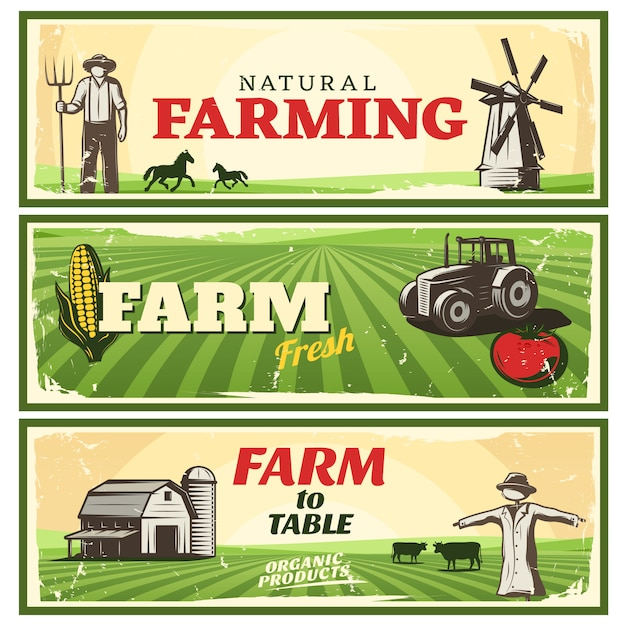 Fazenda para mesa conceito conjunto de banners Vetor grátis
