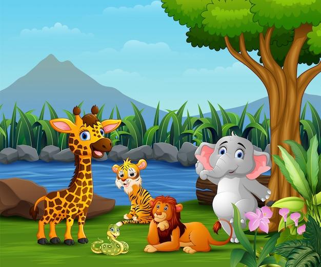 Feliz animal selvagem brincando na natureza Vetor Premium