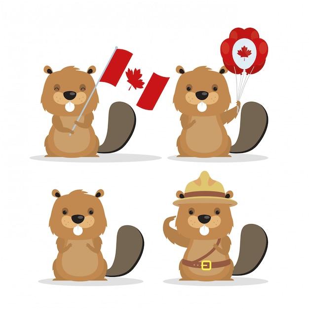 Feliz dia do canadá com castores bonitos Vetor Premium