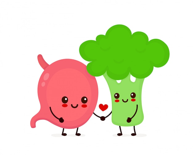 Feliz fofo sorrindo estômago e brócolis apaixonado. Vetor Premium