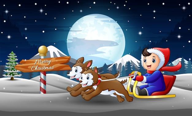 Feliz, menino, montando, ligado, um, sleigh, puxado, por, dois, cão, em, inverno, noturna Vetor Premium