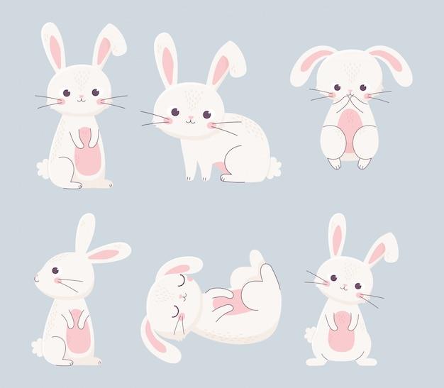 Feliz páscoa coelhos diferentes poses personagens de desenhos animados Vetor Premium