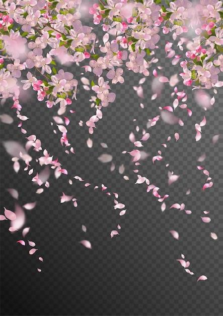 Filial de sakura na primavera com pétalas caindo e elementos transparentes desfocados Vetor Premium