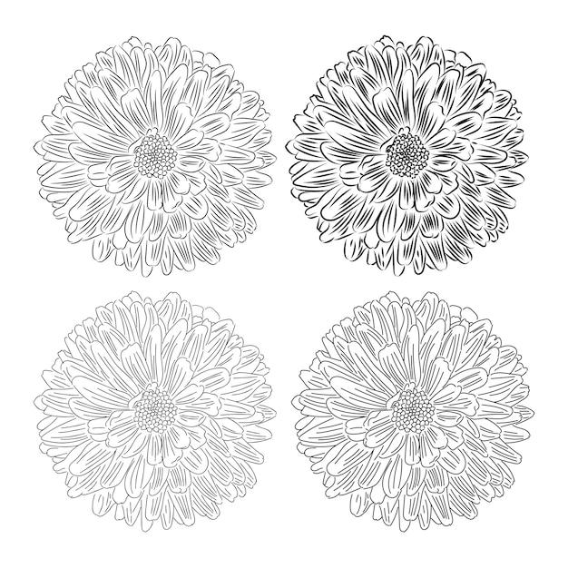 Flor Com Desenho De Petalas No Vetor De Fundo Branco Vetor Premium