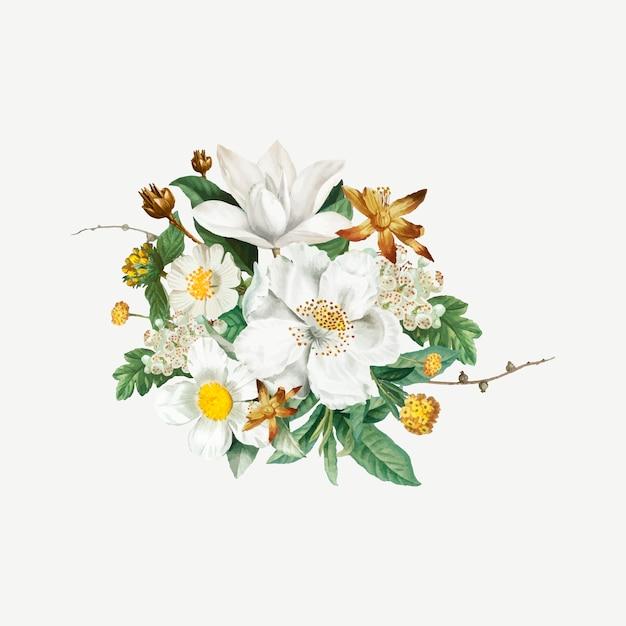 Flor de camélia de montanha Vetor grátis