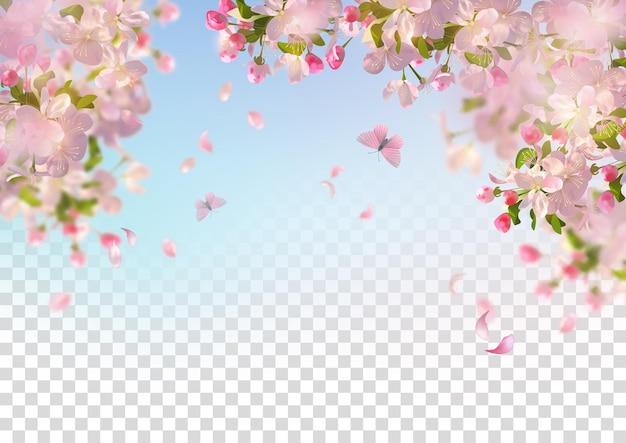 Flor de cerejeira e pétalas voadoras no fundo da primavera Vetor Premium
