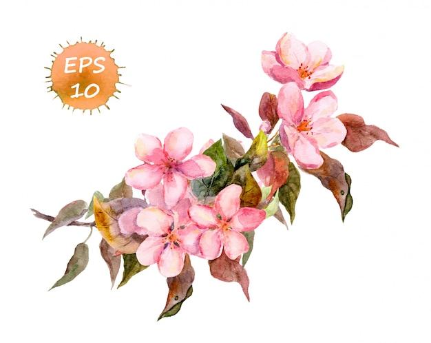 Flor de cerejeira rosa, ramo de ameixa, pêssego, sakura com flores da primavera. Vetor Premium