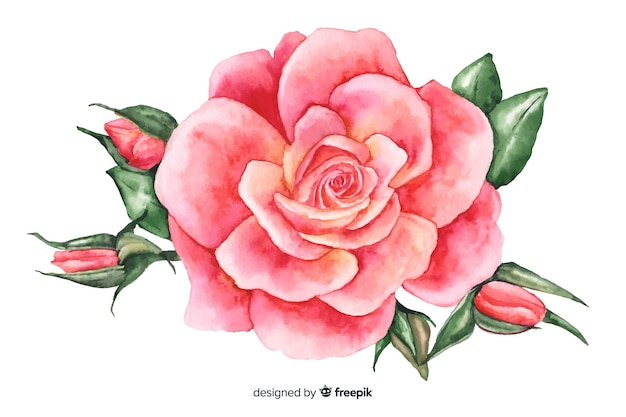 Flor de coral rosa aquarela Vetor grátis