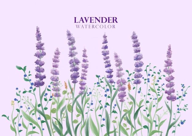 Flor de lavanda em aquarela Vetor Premium