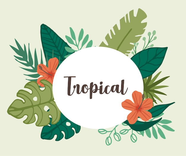 Flor tropical e elemento de folha tropical Vetor Premium