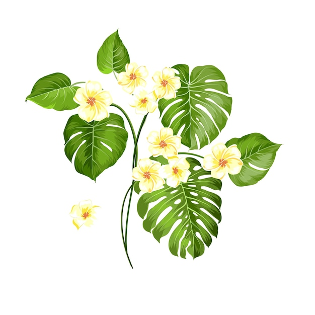 Flor tropical e palmeiras em fundo branco. ilustração vetorial Vetor grátis