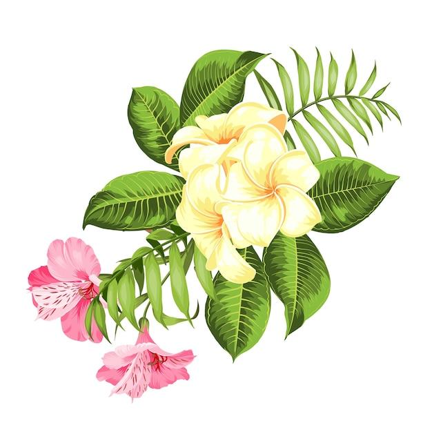 Flor tropical em fundo branco. ilustração vetorial Vetor grátis